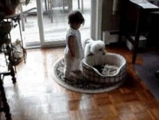 صوره اطفال وحيوانات مضحكة
